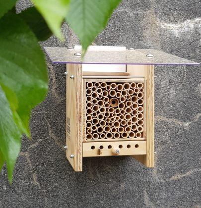 Wildbienen für den eigenen Garten (inkl. Gutscheincode)